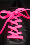 Pink lacing on sneaker Stock Images