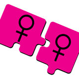 Pink Ladies. Two female symbols on puzzle pieces are featured in an abstract background  illustration Royalty Free Stock Photography