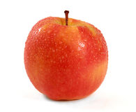 Pink Lady Apple Royalty Free Stock Photography