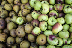 Pink Lady apple with seckel pears Royalty Free Stock Image