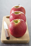 Pink Lady apples Stock Image