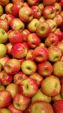 Pink Lady Apples Royalty Free Stock Images