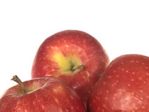 Pink Lady Red Apples Royalty Free Stock Photo