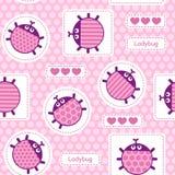 Pink ladybirds seamless vector pattern Stock Photos