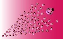 Pink Ladybugs Background royalty free illustration