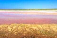 Pink Lake Australia stock photography