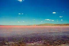 Pink lake Stock Image