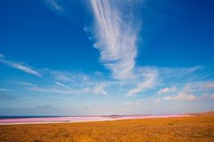 The Pink Lake. Pink lake in the desert Royalty Free Stock Images