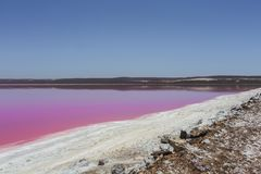 Pink lake Hut Lagoon at Port Gregory, Western Australia, Australia stock photography