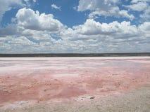 Pink lake near kalbarri, western australia Stock Photos
