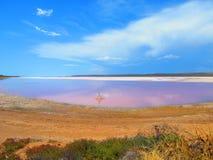 Pink lake near kalbarri, western australia Stock Photography