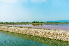 Pink lake in Sardinia Island stock image