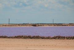 Pink lake. Striking red pool used in the production of salt near Rio Lagartos, Mexico, Yucatan.  Royalty Free Stock Photo