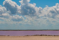Pink lake. Striking red pool used in the production of salt near Rio Lagartos, Mexico, Yucatan.  Royalty Free Stock Photography
