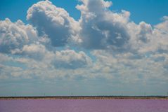 Pink lake. Striking red pool used in the production of salt near Rio Lagartos, Mexico, Yucatan.  Stock Images