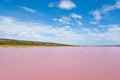 Free Pink Lake, Western Australia Royalty Free Stock Photos - 26683938