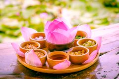 Pink leaf of lotus wrapped in a word with dried lemon, coconut,. Dessert with medicinal plants. Use pink leaf of lotus wrapped in a word with dried lemon royalty free stock photos