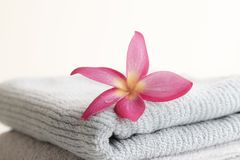 Pink Leaf Wreath on the towel. Beautiful Pink Leaf Wreath on the towel over the background royalty free stock photo