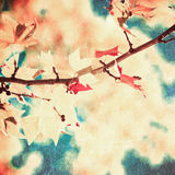 Pink leafs on blue sky royalty free stock image