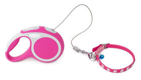 Pink leash for dog with collar. Pink retractable leash for dog and jeweled collar with blue bell isolated on white background Stock Photos