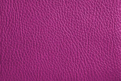 Pink Leather. Texture of a pink leather Stock Photography