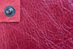 Pink leather and lonely button Stock Photos