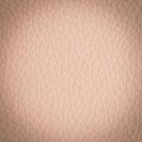 Pink leather macro shot Stock Image