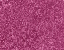 Pink leather texture. Abstract background and texture for design Royalty Free Stock Photo