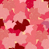 Pink leave vector background Royalty Free Stock Images