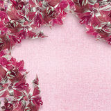 Pink  leaves border. Over textured background Stock Image