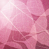 Pink  leaves texture background. Foliage decoration pattern. Stock Photo