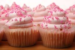 Pink Lemonade Cupcakes Stock Images