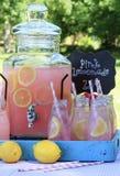 Pink Lemonade at Picnic in Park Stock Photos