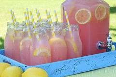 Pink Lemonade at Picnic in Park Royalty Free Stock Photography