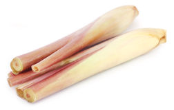 Pink lemongrass Royalty Free Stock Images