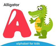Pink letter A and green Alligator. English alphabet with animals. Cartoon characters isolated on white background. Flat design. Zoo theme. Colorful vector Stock Photo