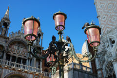 Pink lights on the Piazza San Marco, Venice, Italy Stock Photography