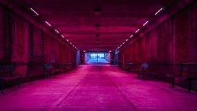 Pink lights in tunnel