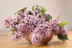 Pink lilac in a vase Stock Photo