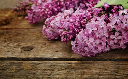 Pink lilac on a wood panels Stock Photo