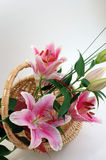 Pink Lilies. A bouquet of beautiful pink lilies in the wicker basket Royalty Free Stock Photo