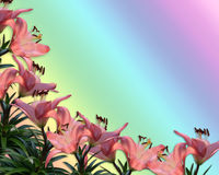 Pink Lilies Border invitation Stock Photography