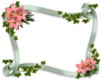 Pink lilies and ribbons border Royalty Free Stock Photography