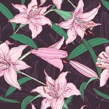 Pink lilies  seamless pattern Stock Photos