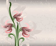 Pink lilies on silk Stock Photos