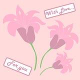 Pink lilium. With card for you Stock Photos
