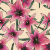 Pink lilly seamless pattern background glass effect Stock Images