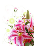 Pink Lily Bouquet. Stock Photo