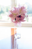 Pink Lily flower in glass jar placed by the elegant window Royalty Free Stock Image