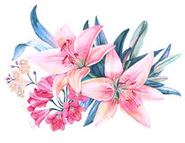 Pink lily flower watercolor bouquet. Isolated Royalty Free Stock Image